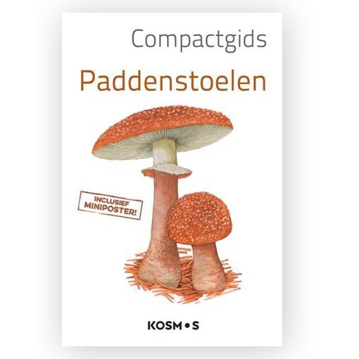 compact gids paddenstoelen